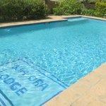 Swimming pool at Kia Ora