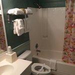 Bathroom of room 113. Great
