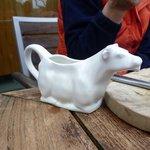 milk jug,