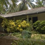 Photo of Palm Garden Guest House