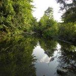 River Doshnica