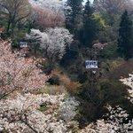 吉野山の玄関口で約90年運行を続けています。