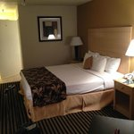 BEST WESTERN PLUS Executive Inn & Suites Foto