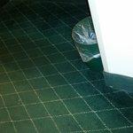 Ramada Columbia Missouri - frayed carpet