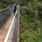 Great swinging bridge that will have your heart pumping if windy.