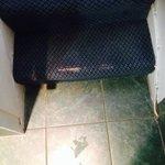 Carpet threadbare
