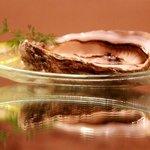 huîtres de Dakhla