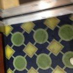 filthy elevador rug