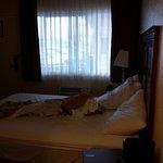 Согласитесь, размеры комнаты совсем не такие, как на сайте отеля?