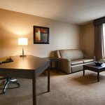 King Executive Suite (Living area)
