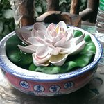 entrance beautiful lotus