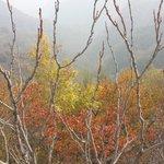 Autumn in Beijing