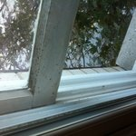 filthy window sill