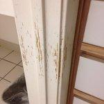 Extended Stay America - San Antonio - Airport Bathroom door claw marks