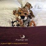 The boys always enjoy a premier inn outing and always have a good sleep lol