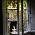 A Window View