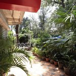 Hotel Amrapali Foto