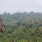 Crater Forest Tented Camp Foto