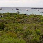 Belle vue sur le Parc des Galapagos et l'océan