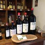 wine tasting at Fattoria di Montagliari