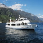 Doubtful Sound Cruise -Day Tours