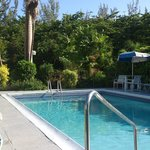 Piscina do Hotel Palm Garden