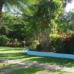 Jardim na frente do apartamento no Hotel Palm Garden