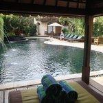 Dewani Villa Pool