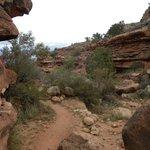 en route to Santa Maria Spring - Hermit Trail