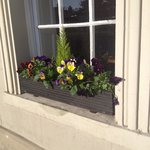 Beautiful window box complementing the stunning house