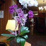 Foto de Hotel Citta dei Mille