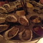 More oysters!