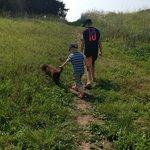 Walking through the fields on the off-leash dog-walk