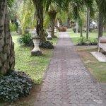 Path towards reception