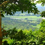 looking over the rain forest towards Puntarenas