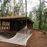 Jungle Lodges Devbagh Beach Resort