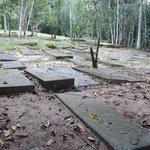 Besides the ruins of the synagogue, there is a Jewish cemetery.
