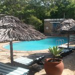 Foto di Mkoma Bay Tented Lodge