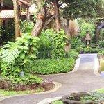 Royal Tunjung Bali - Area Hotel
