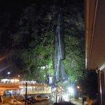 vue sur la cascade de la Vierge depuis la chambre