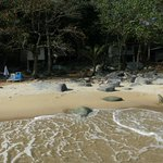SAMa Beach