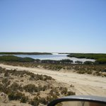 Estero La Bocana -------good fishing, ask for Juanchi