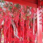 Wishing Tree in Red