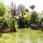Wonderful hot pool