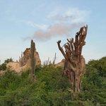 Zonsopgang op de zuidroute plantage ruine