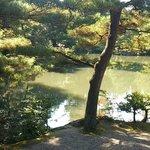 Foto de Shimizuen
