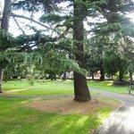 Ambleside - парк напротив
