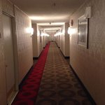 Hallway looks like something in the shining.