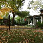 Fall at Lowery House Inn