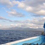 Perjalanan dari/ke Pulau Menjangan